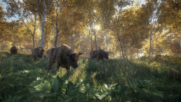 TheHunter—Call-of-the-Wild_Screen4_morning-bisonx1024