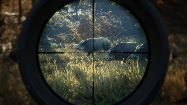 TheHunter-Call-of-the-Wild_Screen6_wild-boars-screen2x1024