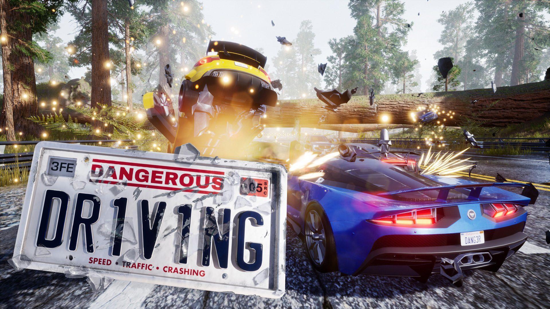 dangerous_driving_vignette