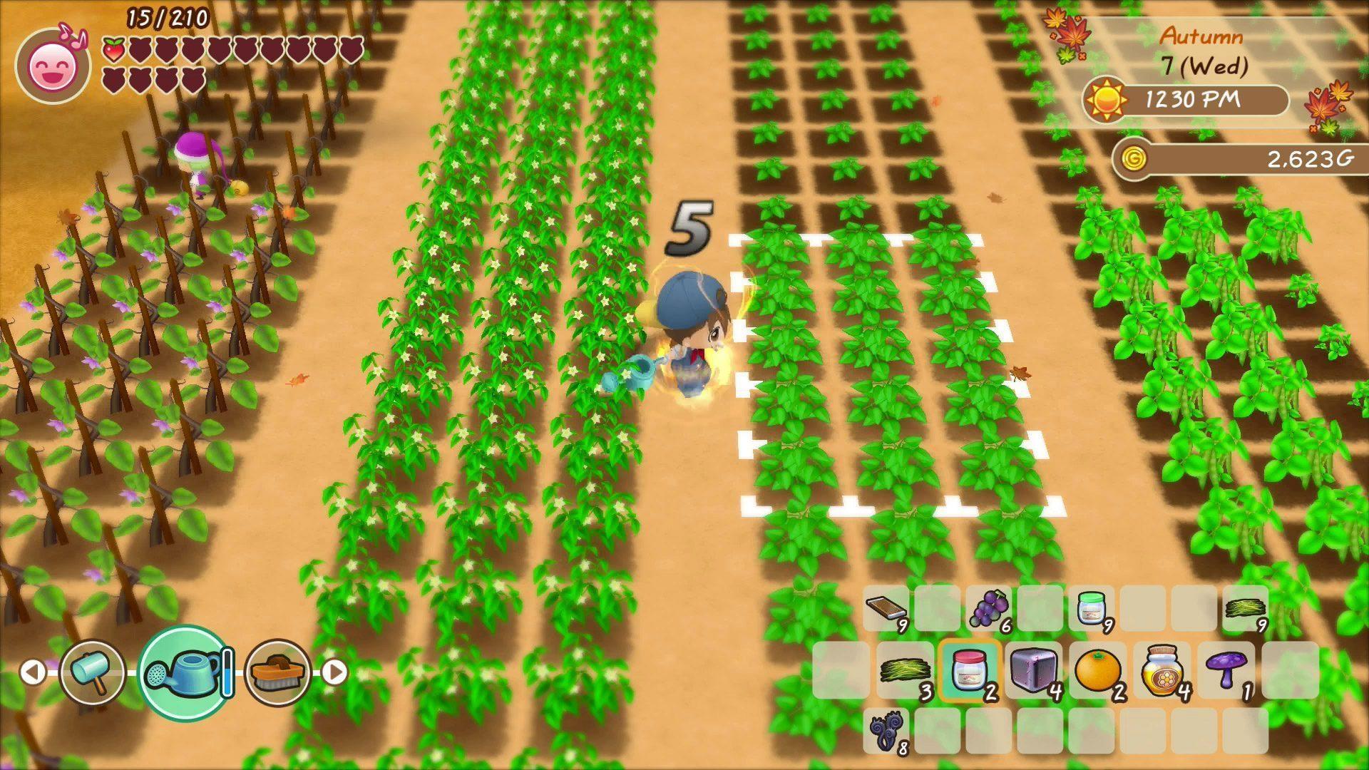 FOMT_SS_EN_Farming_4