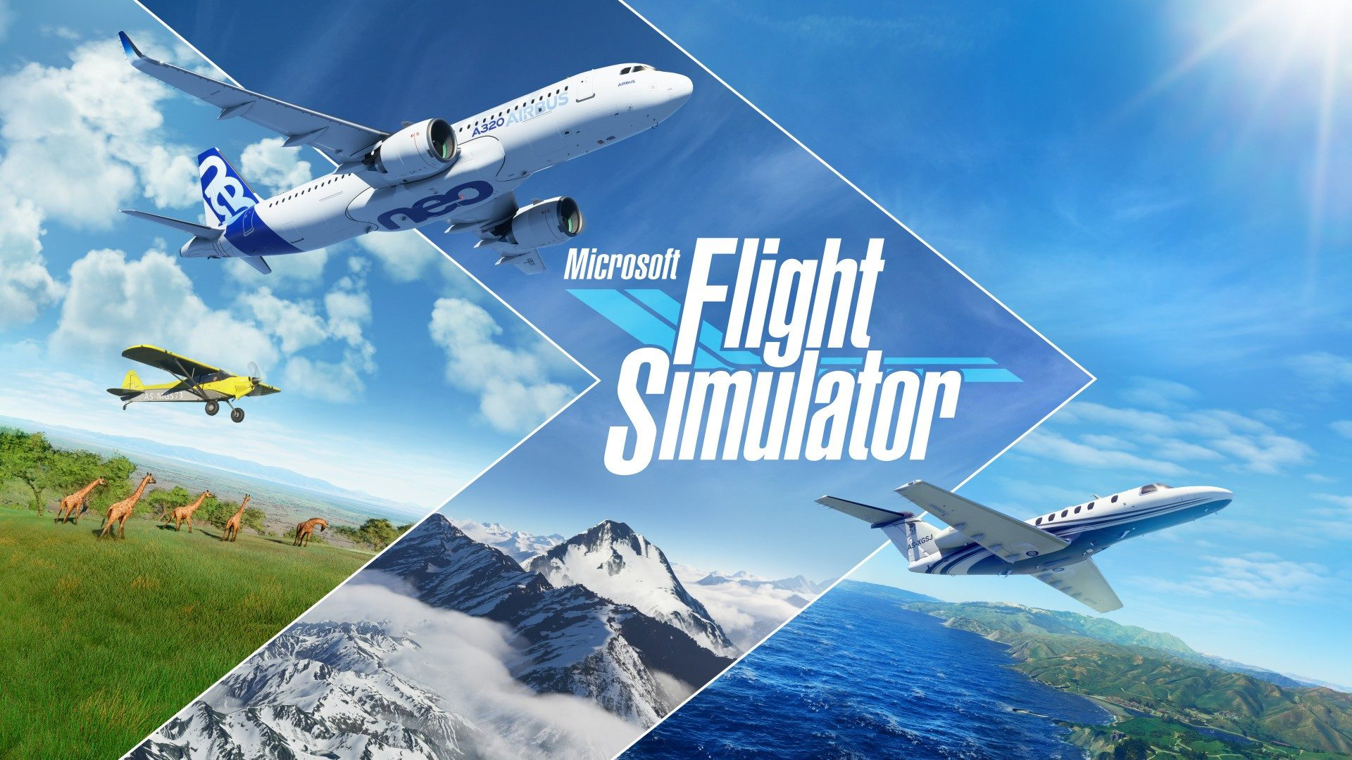 FlightSim_Vignette